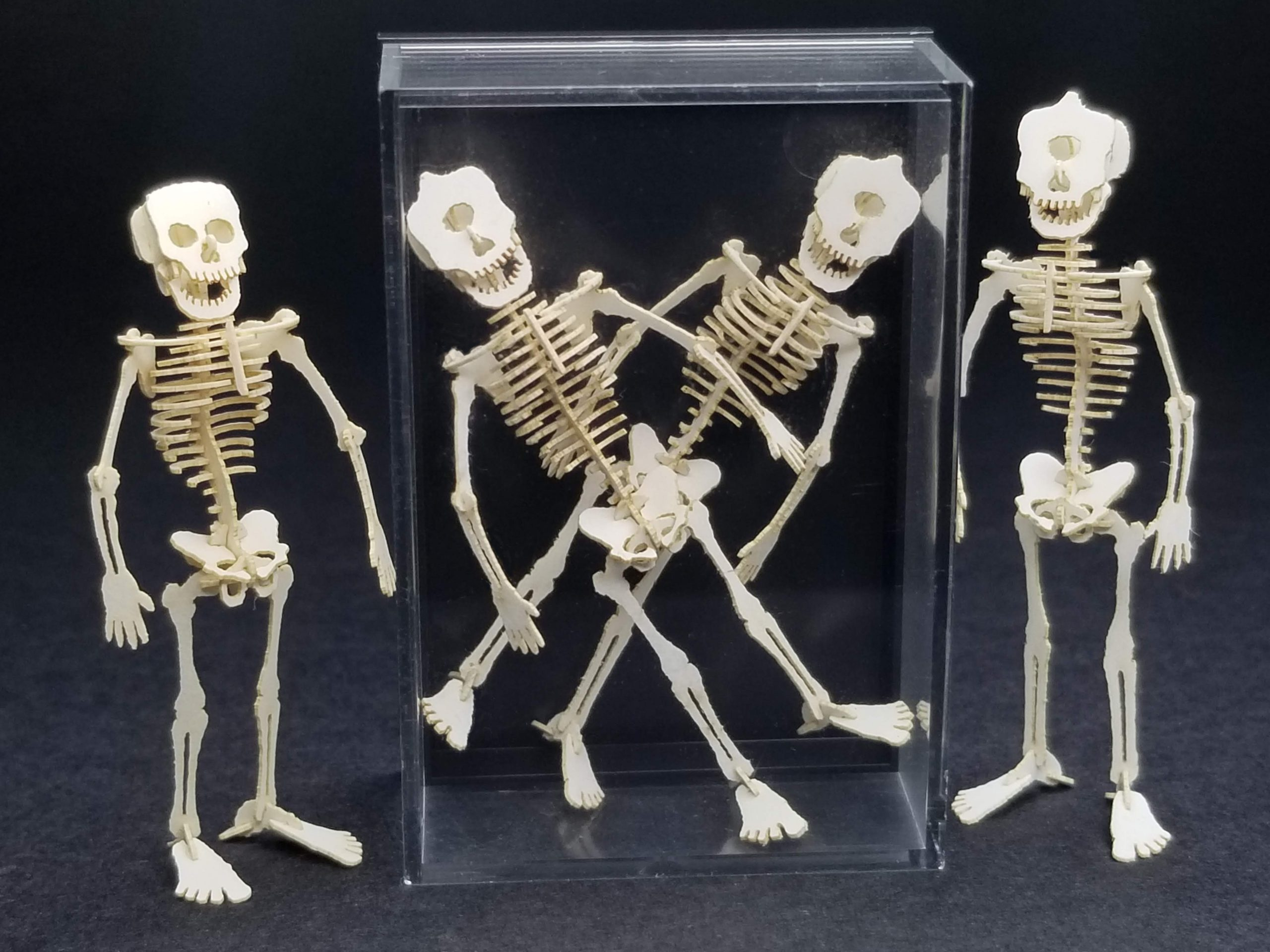 3 cyclopses and a human skeleton