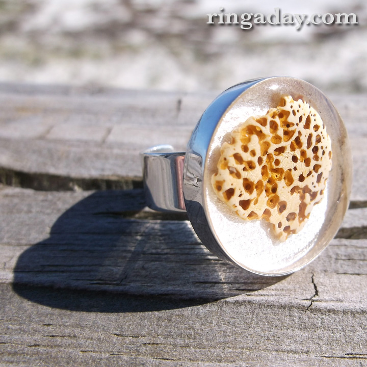 Shell Fragment in resin on silver Ring