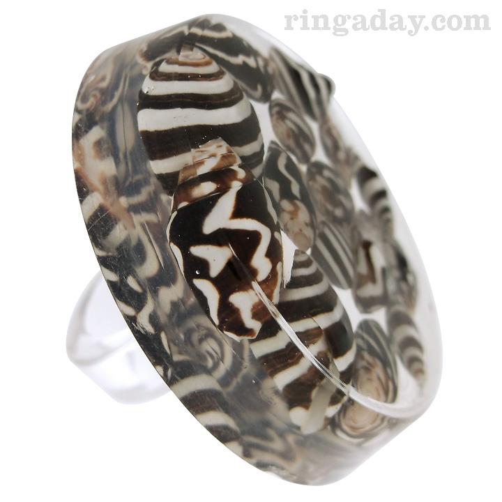Zebra Nerite Resin Ring