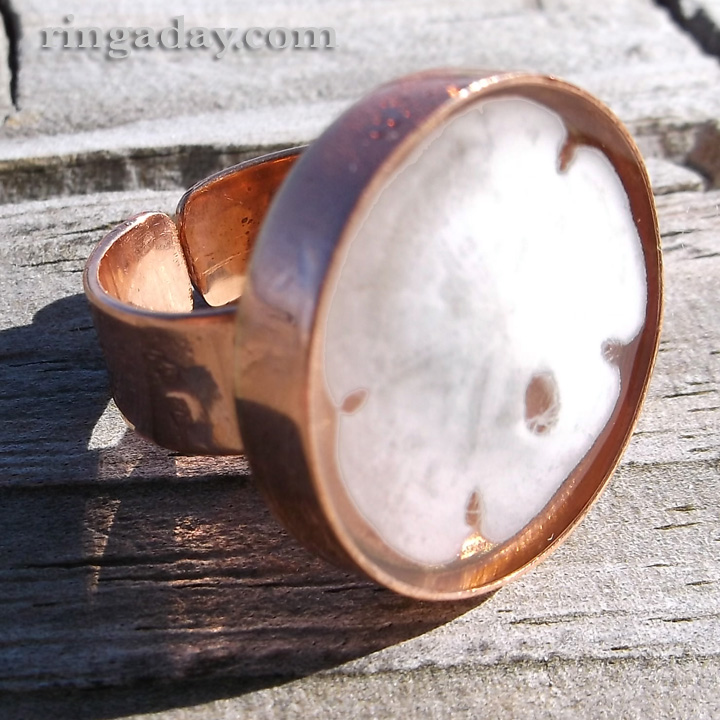 sand dollar in resin on copper ring