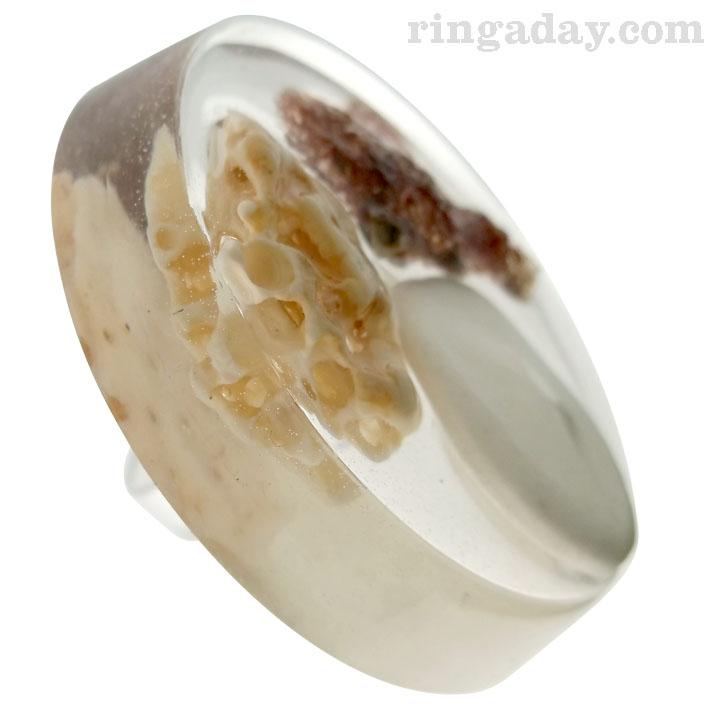 sponge shells and resin ring